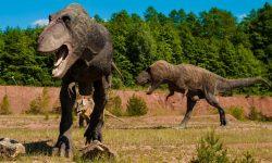 Dinosaurus unessa: Unien tulkinta